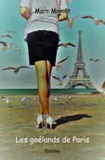Les goélands de Paris