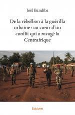 De la rébellion à la guérilla urbaine : au cœur d'un conflit qui a ravagé la Centrafrique