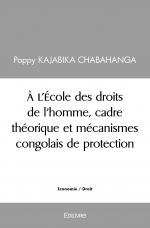 À l'École des droits de l'homme, cadre théorique et mécanismes congolais de protection