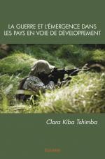 La Guerre et l'émergence dans les pays en voie de développement