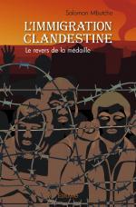 L'immigration clandestine
