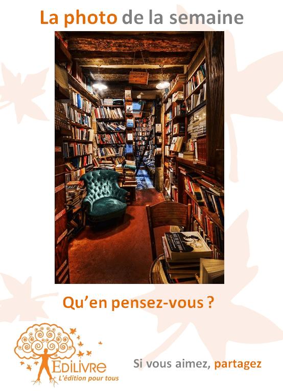 Bibliotheque Archives Edilivre Publier Un Livre En Ligne