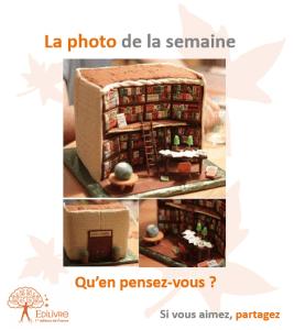 La_photo_de_la_semaine_Edilivre
