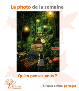 a_photo_de_la_semaine_Edilivre