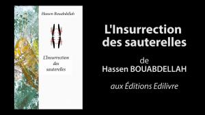 Bande_annonce_l'insurrection_des_sauterelles_Edilivre