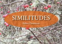 Similitudes