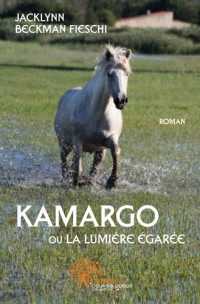 Kamargo ou la lumi