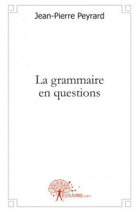 La grammaire en questions