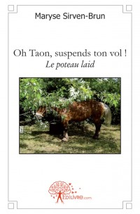 Oh Taon, suspends ton vol !