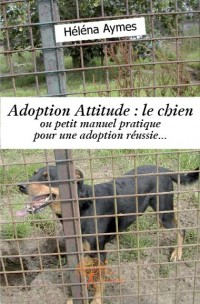 Adoption Attitude : le chien