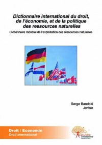 Dictionnaire international du droit, de l