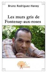 Les murs gris de Fontenay-aux-roses