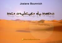 Mes couleurs du Maroc