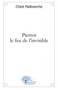 Pierrot le feu de l'invisible