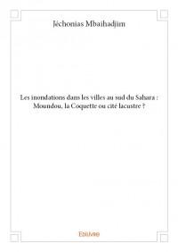 Les inondations dans les villes au sud du Sahara : Moundou, la Coquette ou cité lacustre ?