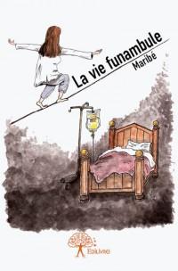 La vie funambule