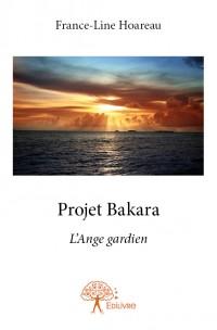 Projet Bakara