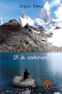 28 de noviembre