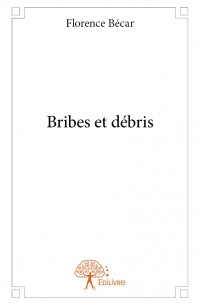 Bribes et débris