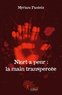 Niort a peur : la main transpercée