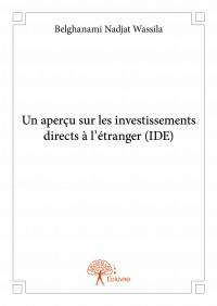 Un aperçu sur les investissements directs à l'étranger (IDE)