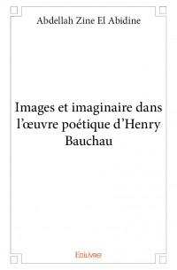 Images et imaginaire dans l'œuvre poétique d'Henry Bauchau